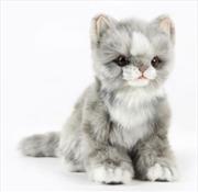 Kitten Jacquard Sitting Gray 19cm H | Toy