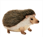 African Pygmy Hedgehog 23cm L | Toy