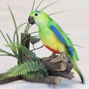 Orange Breasted Parrot 12cm H | Toy