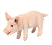 Piglet Standing 34cm L | Toy