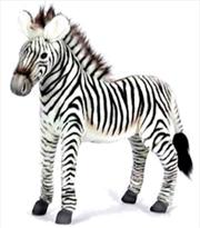 Zebra Grevy 50cm L | Toy