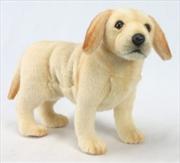 Labrador Pup 35cm L | Toy
