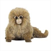 Pygmy Marmoset 15cm H | Toy