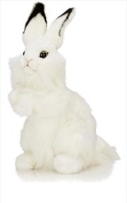 White Rabbit 32cm H | Toy
