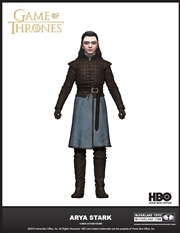 Game of Thrones - Arya Stark 6 Inch Action Figure | Merchandise