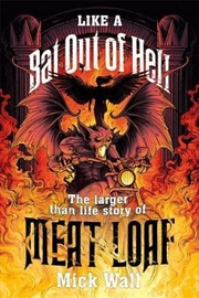 Like a Bat Out of Hell | Paperback Book