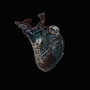 Guardians Of The Heart Machine
