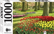 Springtime tulips, Holland 1000 Piece Jigsaw