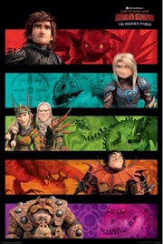 How To Train Your Dragon 3 - Panels Poster | Merchandise