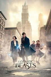 Fantastic Beasts - New York Street Poster