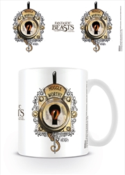 Fantastic Beasts - Muggle Worthy