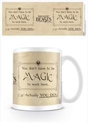 Fantastic Beasts - Magic | Merchandise
