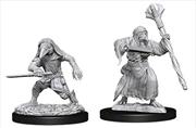 Dungeons & Dragons - Nolzur's Marvelous Unpainted Minis: Kenku Adventurers | Games