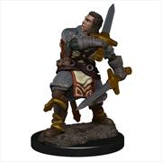 Dungeons & Dragons - Premium Male Human Paladin