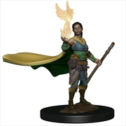 Dungeons & Dragons - Premium Female Elf Druid