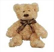 16cm Scruffy Bear Brown