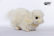 Cream Lop Ear Bunny 25cm L | Toy