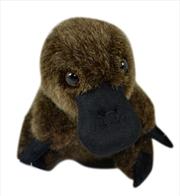 14cm Platypus