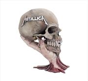 Skull | Merchandise