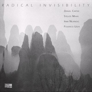 Radical Invisibility | Vinyl