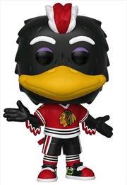 NHL: Blackhawks - Tommy Hawk Pop! Vinyl   Pop Vinyl