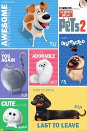 Secret Life Of Pets 2 - Grid | Merchandise