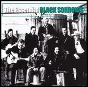 Essential The Black Sorrows - Gold Series
