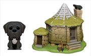 Harry Potter - Fang with Hagrid's Hut Pop! Town | Pop Vinyl
