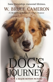 Dogs Journey | Paperback Book