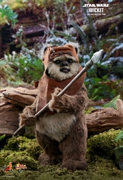 Star Wars - Wicket Return of the Jedi 1:6 Scale Acton Figure | Merchandise