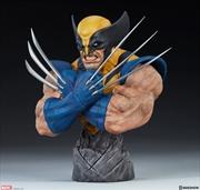 """X-Men - Wolverine 9"""" Bust"""