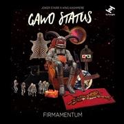 Firmamentum | Vinyl