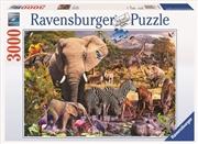 Ravensburger - 3000pc African Animal World Jigsaw Puzzle | Merchandise