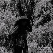Analog Fluids Of Sonic Black H | CD