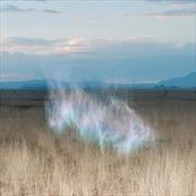 Gathering Dawn | CD