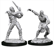 Dungeons & Dragons - Nolzur's Marvelous Unpainted Minis: Wight & Ghast | Games
