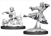 Dungeons & Dragons - Nolzur's Marvelous Unpainted Minis: Female Human Monk   Games