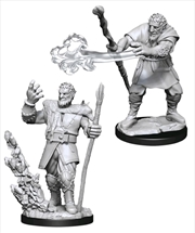 Dungeons & Dragons - Nolzur's Marvelous Unpainted Minis: Male Firbolg Druid | Games