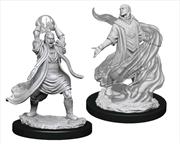 Dungeons & Dragons - Nolzur's Marvelous Unpainted Minis: Male Elf Sorcerer   Games