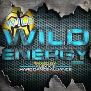 Wild Energy 2019 | CD