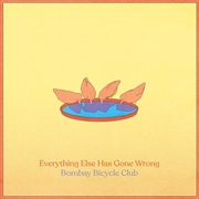 Everything Else Has Gone Wrong | CD