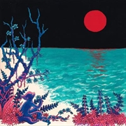 First Glass Beach Album | Vinyl