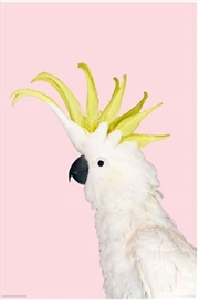 White Cockatoo On Pink | Merchandise