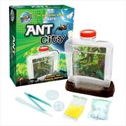 Ant City | Toy