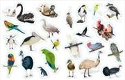 Steve Parish Sticker Books: Beautifule Australian Birds | Paperback Book