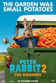 Peter Rabbit 2 | DVD