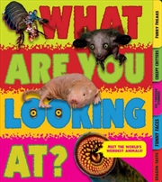 What Are You Looking At? Extraordinary Creatures You've Never Seen! | Spiral Bound