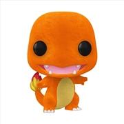 Pokemon - Charmander FL Pop! EC20 RS | Pop Vinyl