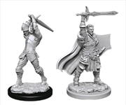 Dungeons & Dragons - Nolzur?s Marvelous Unpainted Minis: Male Human Paladin | Games