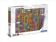 Mordillo: Jungle | Merchandise